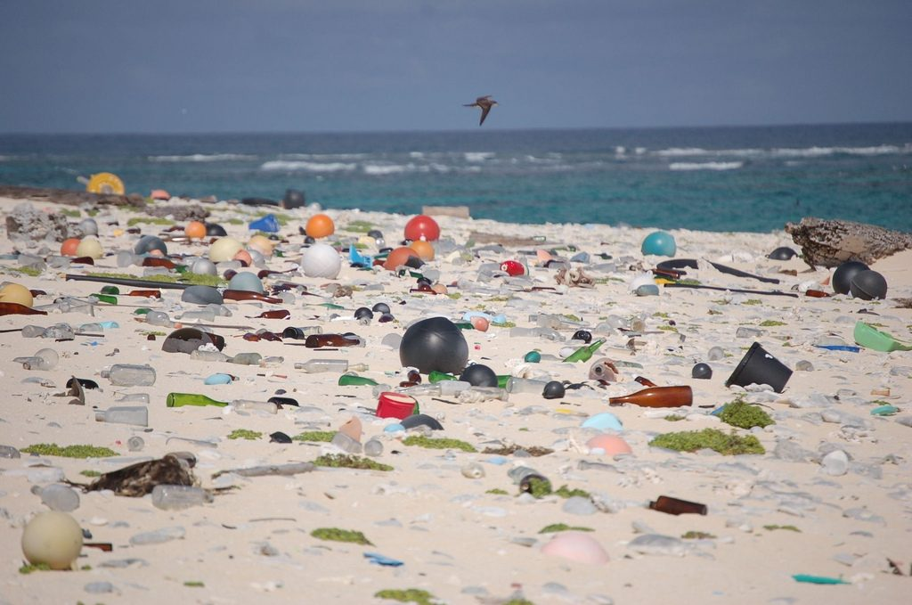 Hawaii Beach Covered in Plastic