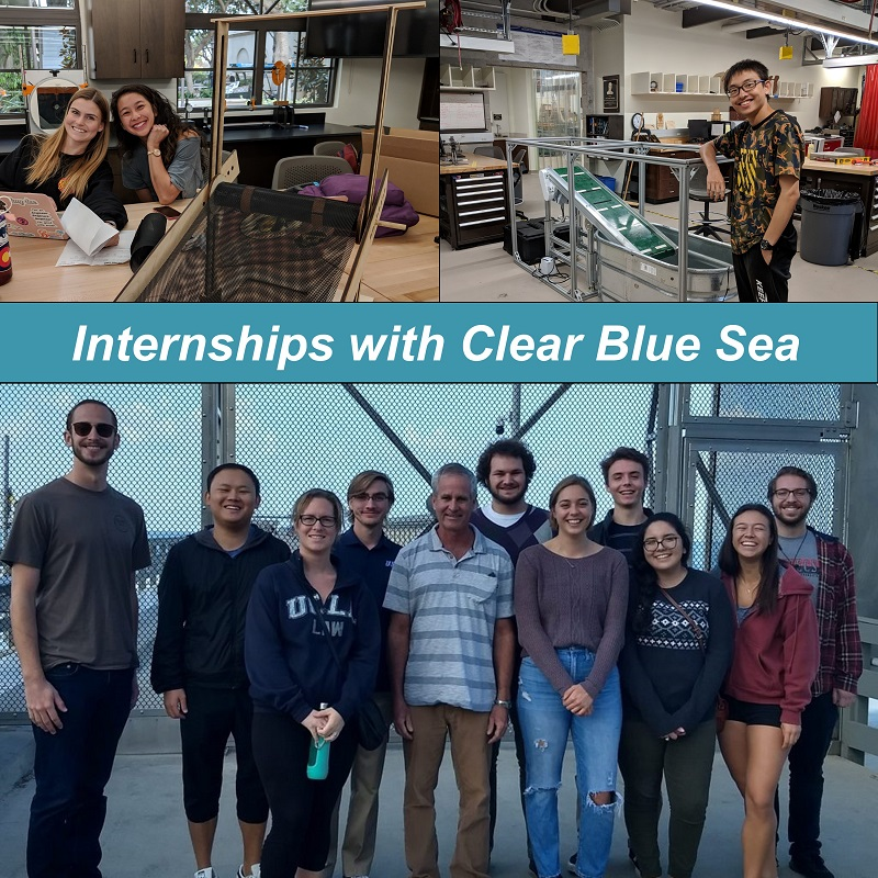 CBSea Internships Composite photo